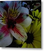 Painted Lily Metal Print