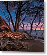 Painted Tree Metal Print