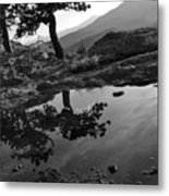 Pale Reflections Metal Print