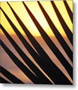 Palm Frond Detail Metal Print