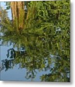 Palm Mirror Metal Print