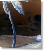 Palm Swaying In The Breeze Metal Print