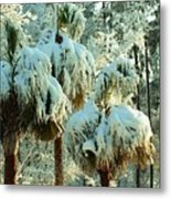 Palmetto Row Metal Print