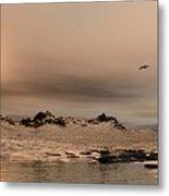 Panorama Winter Ocean Scene Metal Print