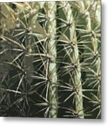 Paper Cactus Metal Print