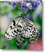 Paper Rice Butterfly Metal Print
