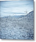 Parched Metal Print by Keith Sanders