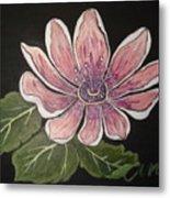 Passion Flower Metal Print