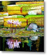 Passion For Color Metal Print