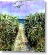 Pathway To The Shore Metal Print by Dina Sierra