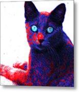 Patriotic Cat Metal Print