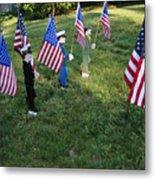 Patriotic Lawn Ornaments Represent Metal Print