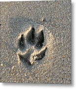Pawprint In The Sand Metal Print