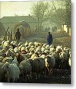 Peasants And Herd On The Village Path Metal Print