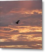 Pelican In Painted Sky Metal Print
