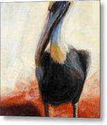 Pelican Study Metal Print