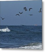 Pelicans Over The Atlantic Metal Print