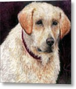 Pensive Golden Retriever Metal Print by Melissa J Szymanski