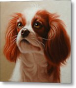 Pet Portrait Of A Cavalier King Charles Spaniel Metal Print