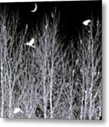 Phantom Birds Metal Print