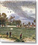 Pigeon Hunting, C1875 Metal Print