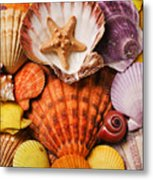 Pile Of Seashells Metal Print
