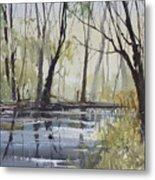 Pine River Reflections Metal Print