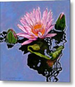 Pink Lily With Dancing Reflections Metal Print