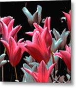 Pink N Silver Tulips Metal Print