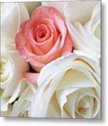 Pink Rose Among White Roses Metal Print