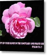 Pink Rose Psalm 134 Vs 2 Metal Print