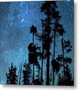Pinnacle Of The Forest  Metal Print