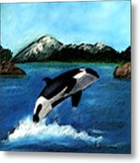 Playful Orca Metal Print