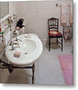 Plumber - The Bathroom  Metal Print