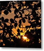 Pointed Shadow Metal Print