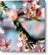 Pollination 1.06 Metal Print