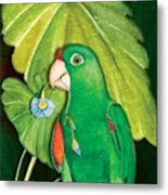 Polly Wants A Flower Metal Print