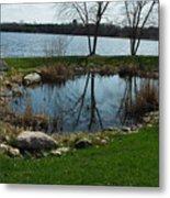 Pond By The Lake Metal Print