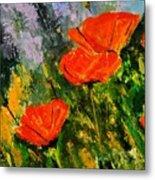 Poppies 107 Metal Print
