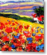Poppies In The Spring Time.  Metal Print