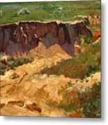 Poppy Gorge Metal Print