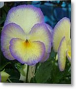 Portrait Of A Flower Metal Print