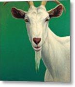 Portrait Of A Goat Metal Print by James W Johnson