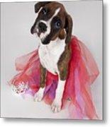 Portrait Of Dog Wearing Tutu Metal Print