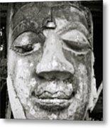 Portrait Of The Buddha Metal Print
