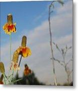 Prairie Cone Flowers Against Blue Sky Vertical Number Two Metal Print