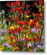 Prairie Wildflowers 2 Metal Print