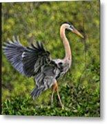 Prancing Heron Metal Print
