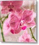 Pretty In Pink Metal Print by Pamela Ellis