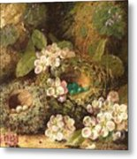Primroses And Bird's Nests On A Mossy Bank Metal Print